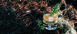 Seedlip Burnt Citrus Spritz by Tasty Decoy